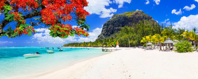 2 week B&B stay at top rated apartment in Mauritius + flights from Munich for €538!