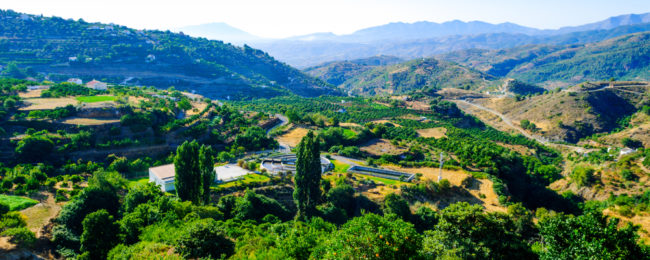JULY! 7-night stay at well-rated hotel in Andalusia countryside + cheap flights from Cardiff for just £144!