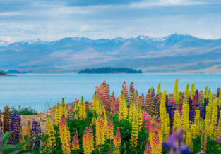 Discover New Zealand! Auckland, Hamilton (Hobitton), Wellington,  Queenstown (gateway to Fiordland) and Christchurch in one trip from London from £472!