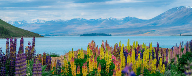 Cheap flights from Dublin to Auckland, New Zealand for only €622!
