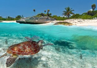Beach break in Mexico! 8-night stay at well-rated hotel in Playa del Carmen + flights from Barcelona for only €411!