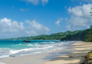 Last minute: Direct flights from Dusseldorf to Samana, Dominican Republic for only €209!