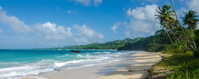 Cheap non-stop flights from Dusseldorf to Samana, Dominican Republic from only €322! (incl. checked bag)