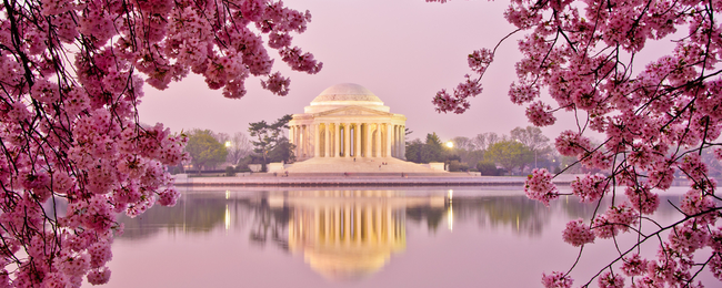 Cheap flights from Copenhagen to Washington for only €231!