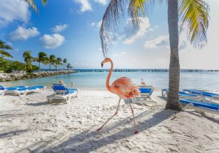 Cheap non-stop flights from Stockholm to Aruba from only €182!