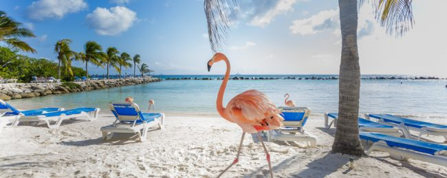 Destination Fly4free: Aruba