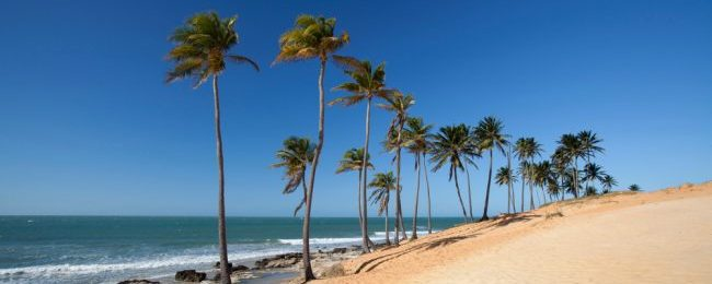 Cheap! Non-stop flights from Florida to Brazil over peak summer from only $298!