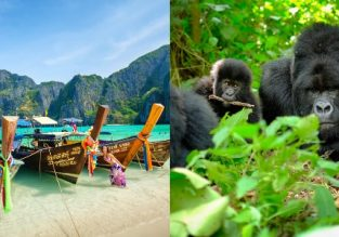 Cheap Turkish Airlines flights from France to Thailand, Uganda, Rwanda or Kenya from only €316!
