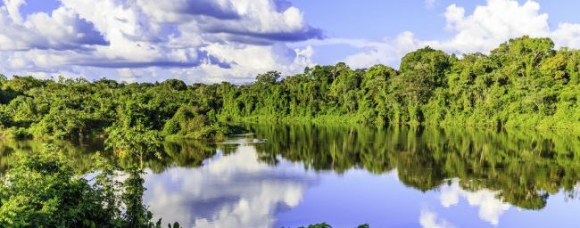 Exotic! Cheap non-stop flights from Amsterdam to Suriname from €399!