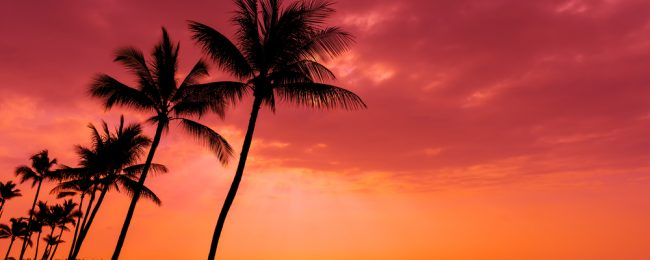PEAK SUMMER! Cheap flights from California to Kona, Hawaii from just $287!