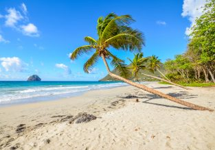 PEAK SEASON! Cheap full-service non-stop flights from Brussels to Guadeloupe or Martinique for only €316!