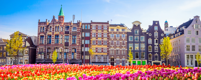 Cheap flights from South Korea to Amsterdam from only $449!