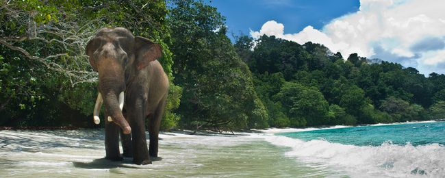 Destination Fly4free: Andaman Islands
