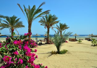 Cheap non-stop flights from UK to Marsa Alam on Egypt's Red Sea coast for only £60!