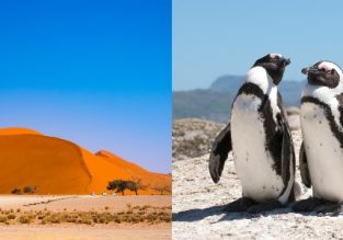 Cheap! Flights from Italy to Namibia or South Africa from only €363!