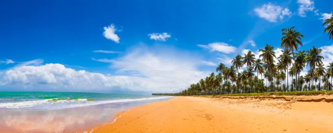 SUMMER! Cheap flights from Rome or Milan to Fortaleza or Salvador, Northeastern Brazil from only €346!