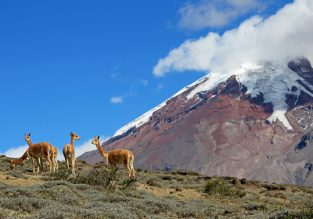 HOT! Cheap flights from Amsterdam to Ecuador for €273!