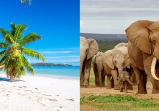 5* Etihad: Seychelles and South Africa in one trip from Paris for only €462!