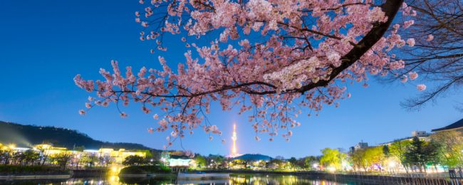 Summer! Cheap flights from Tokyo, Japan to Daegu, South Korea or vice-versa from only $89!