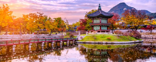 Cheap flights from New York to Seoul, South Korea for just $415!