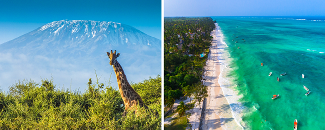 Discover wild Tanzania! Kilimanjaro, Zanzibar and Dar Es Salaam in one trip from Paris for €425!