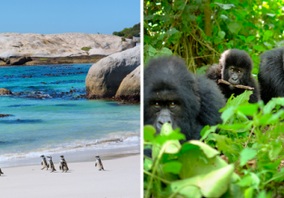 2 in 1: Brussels to both Cape Town, South Africa and Kigali, Rwanda in one trip for only €499!
