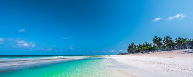 Half-Board stay at luxurious 5* resort in Kenya + flights from Amsterdam for only €563! Full-board for €56 more!