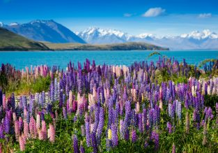 Cheap flights from Rome to Christchurch, New Zealand for only €556!