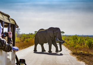 Cheap full-service flights from Hungary to South Africa for only €361!