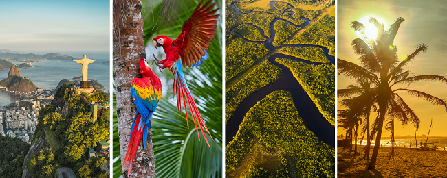 Around Brazil! 5 in 1: France to Rio de Janeiro, Brasilia, Manaus, Belem and Fortaleza in one trip for only €631!