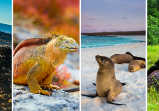 Amazing trip! Mexico, Colombia, mainland Ecuador and Galapagos from Barcelona from €899!