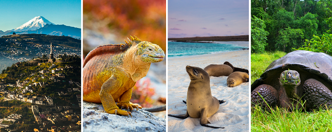 X-mas in Ecuador! Cheap flights from Germany to Quito + Galapagos Island Hopper for only €747!