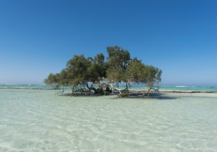 Cheap non-stop flights from Italy to Marsa Alam on Egypt's Red Sea coast from only €53!