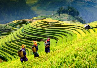 Cheap flights from Hong Kong to Ho Chi Minh, Vietnam or vice-versa from only $74!