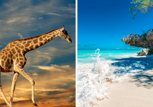 Zanzibar, Johannesburg and Cape Town in one trip from London just £456!