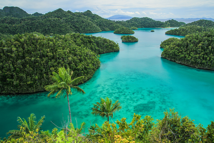 ST West Papua 3