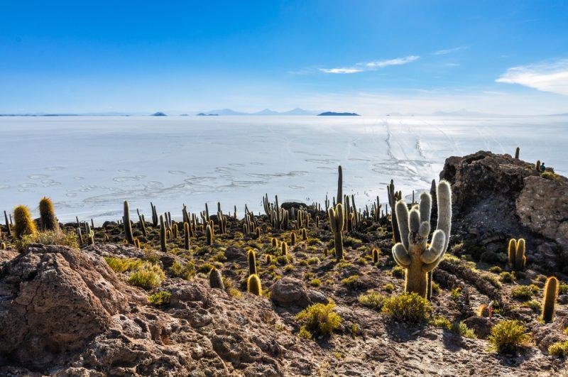 Bolivia Salar STNEW