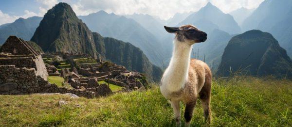 Peru ST e1580782092400
