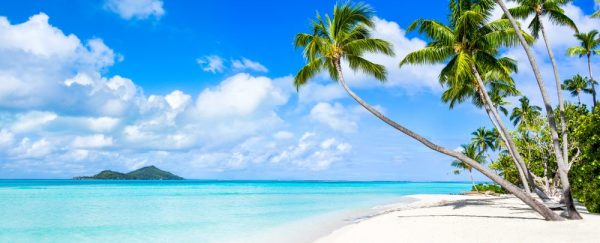 ST Maldives 1 e1583287405853