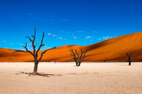 ST NamibiaNEW
