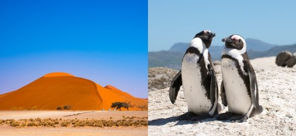ST Namibia Cape Town South Africa