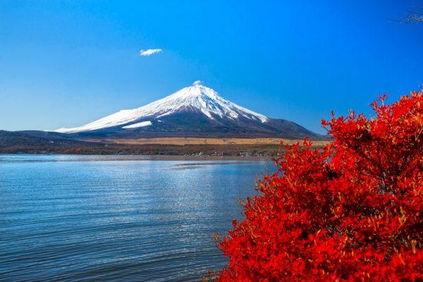 NEW 750px ST Fuji autumn Japan Tokyo ph Luciano Mortula LGM