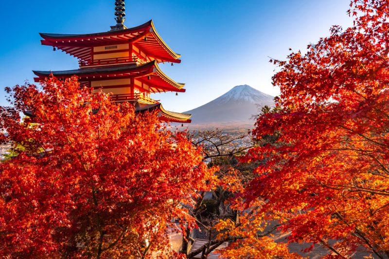 ST Fuji and pagoda Japan Tokyo ph FOTOGRIN