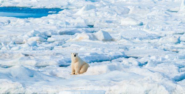 ST Svalbard8 e1586589222470
