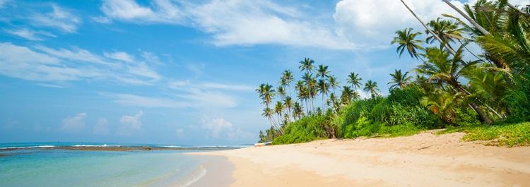 NEW 750px cropped ST Sri Lanka beach ph Anton Gvozdikov 2