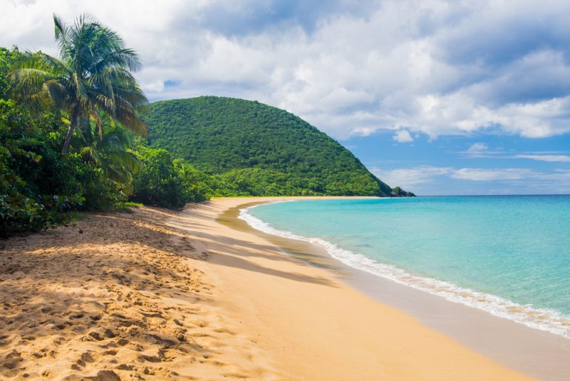 Until June 2021! Cheap flights from Germany to Martinique or Guadeloupe from only €332!