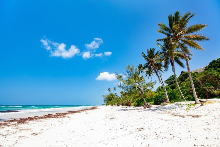 NEW 750px ST Mombasa Kenya beach 2