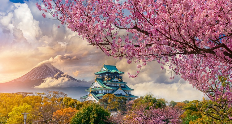 750px  ST Osaka castle Japan ph chanchai duangdoosan