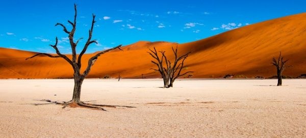 NEW 750px ST Namibia