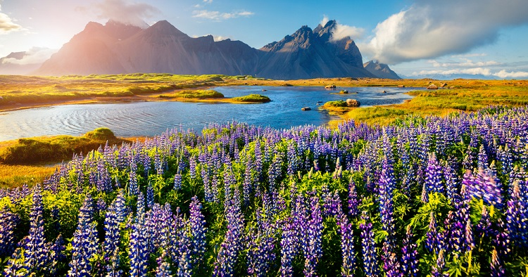 750px ST Iceland new 1